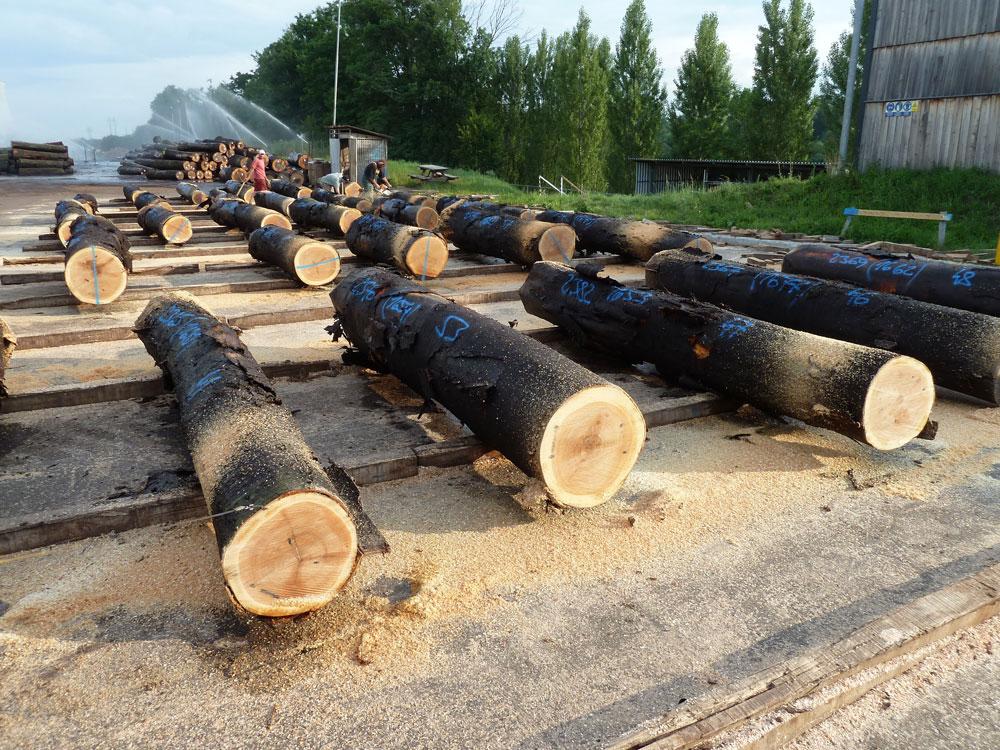 Tranciati legno impiallacciature per mobili for Grandi capanne di tronchi